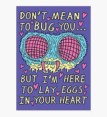 Bug Love Photographic Print