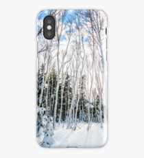 St Anns Bay Trail, Cape Breton iPhone Case/Skin