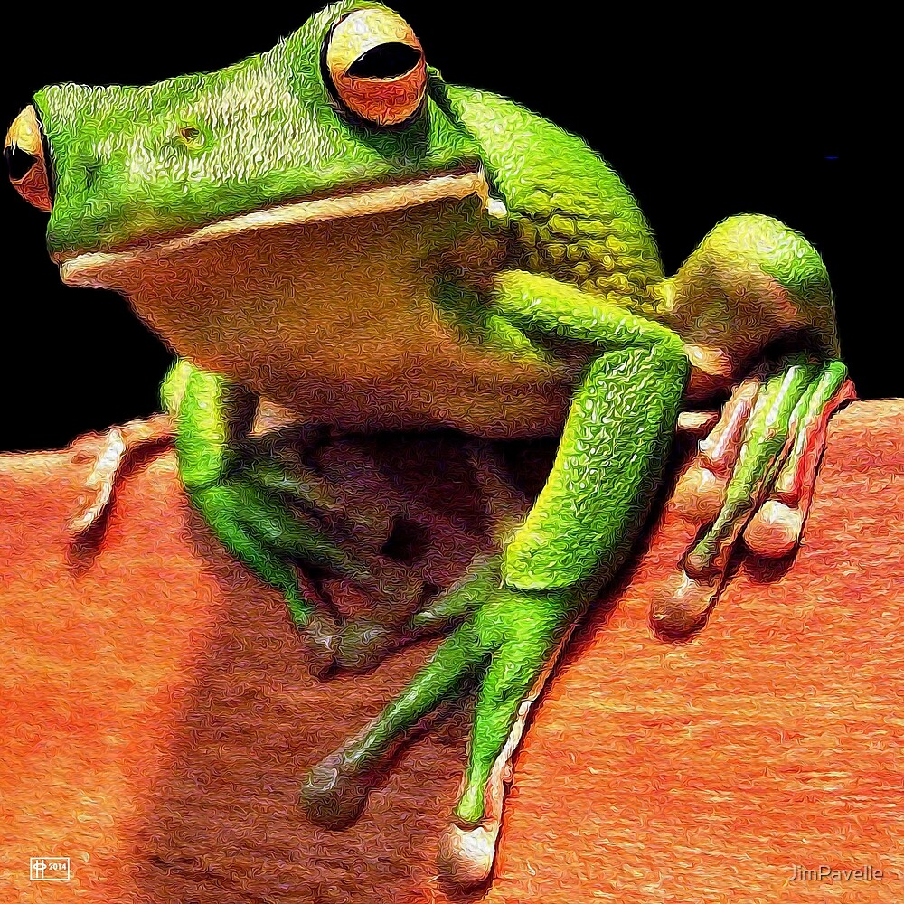 Tree Frog Toe Hold by JimPavelle