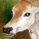 Jersey Cow aceo by Brenda Thour