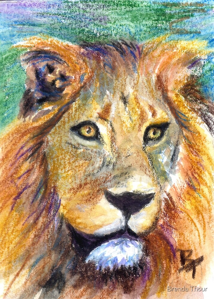 Lion Portrait ACEO by Brenda Thour