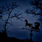 Weather vane against an evening sky by Corri Gryting Gutzman