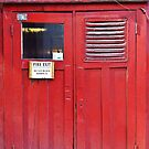 Fire Exit Door by Ethna Gillespie