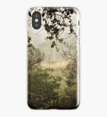 Umbagong district park (11) iPhone Case/Skin
