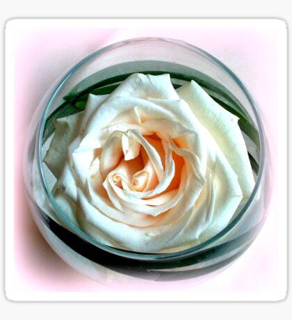 White Rose in Glass Sticker