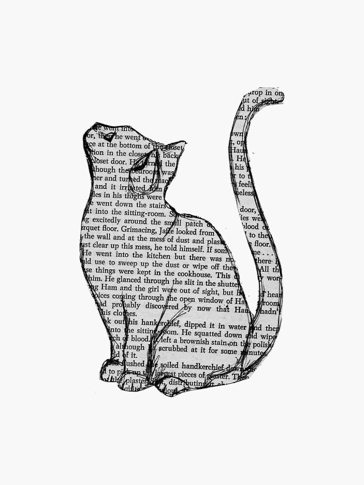 Gatos de Katiebaxa