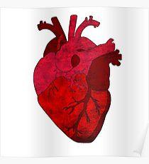 Human heart. Poster