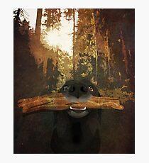 Playful Labrador Photographic Print