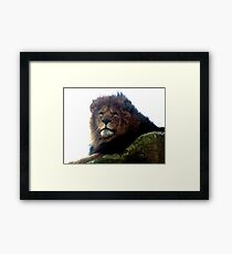 Wallace Framed Print