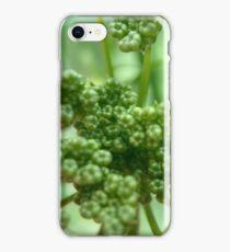 Seedlings iPhone Case/Skin