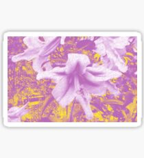 Lively Lilies  Sticker