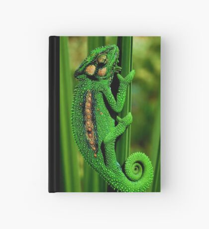 Cape Dwarf Chameleon II Hardcover Journal