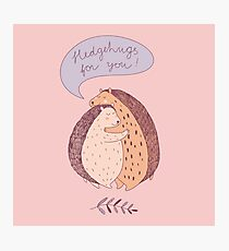 cute drawing with two hugging hedgehogs Photographic Print