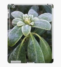 Winter freshness iPad Case/Skin
