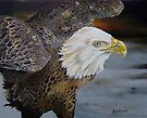 Eagle Landing by Phyllis Beiser