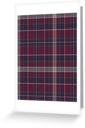 02907 Saginaw County, Michigan Tartan  by Detnecs2013