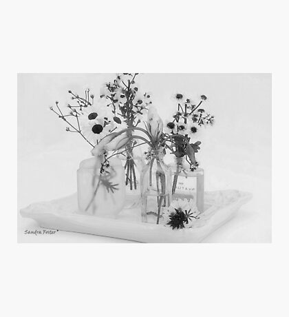 Four Bottles And Their Flowers Photographic Print