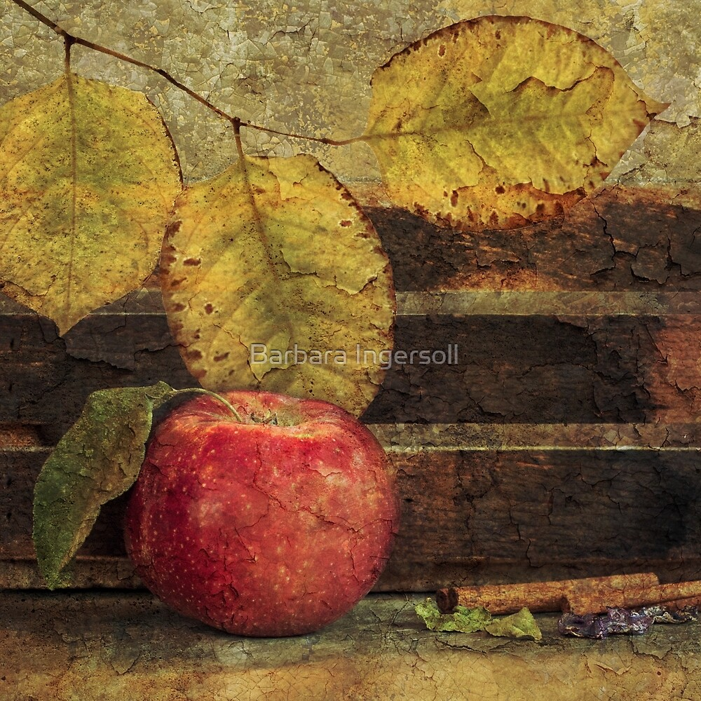 Apple by Barbara Ingersoll
