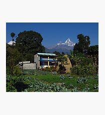 Vegetable Garden, Nepal Photographic Print