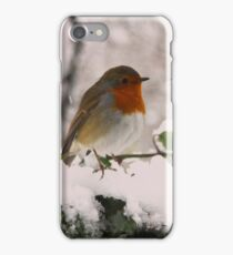 Twittering in the snow iPhone Case/Skin