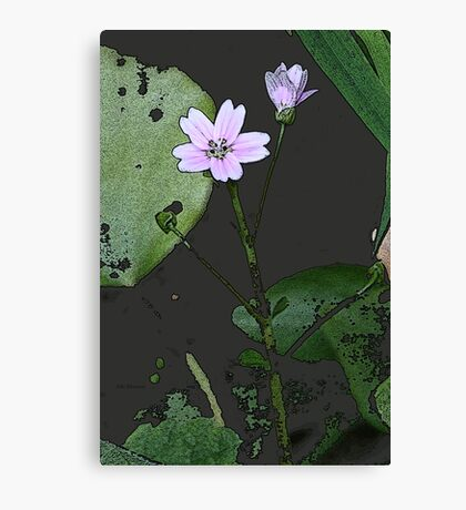 the big PINK FLOWER  Canvas Print