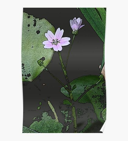 the big PINK FLOWER  Poster
