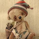 Handmade bears from Teddy Bear Orphans - Tom Lad by Penny Bonser