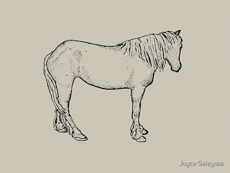 Horse Drawing: Standing Horse, Outline Art: Equine Art\