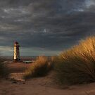 Golden Light at Talacre by robevans