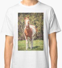 Funny Humor I Classic T-Shirt