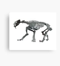saber toothed cat Canvas Print