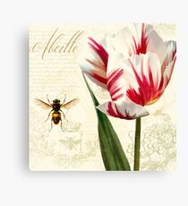 Natural History Sketchbook I Botanical study bumble bee, tulip Canvas Print