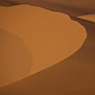 Dune by AJM Photography
