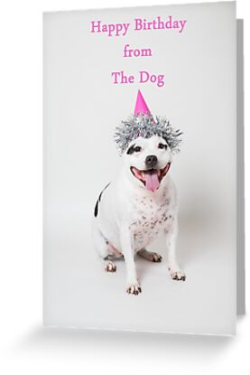 Happy Birthday From The Dog By Penel