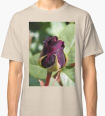 Rose Bud ... Dark Red Classic T-Shirt