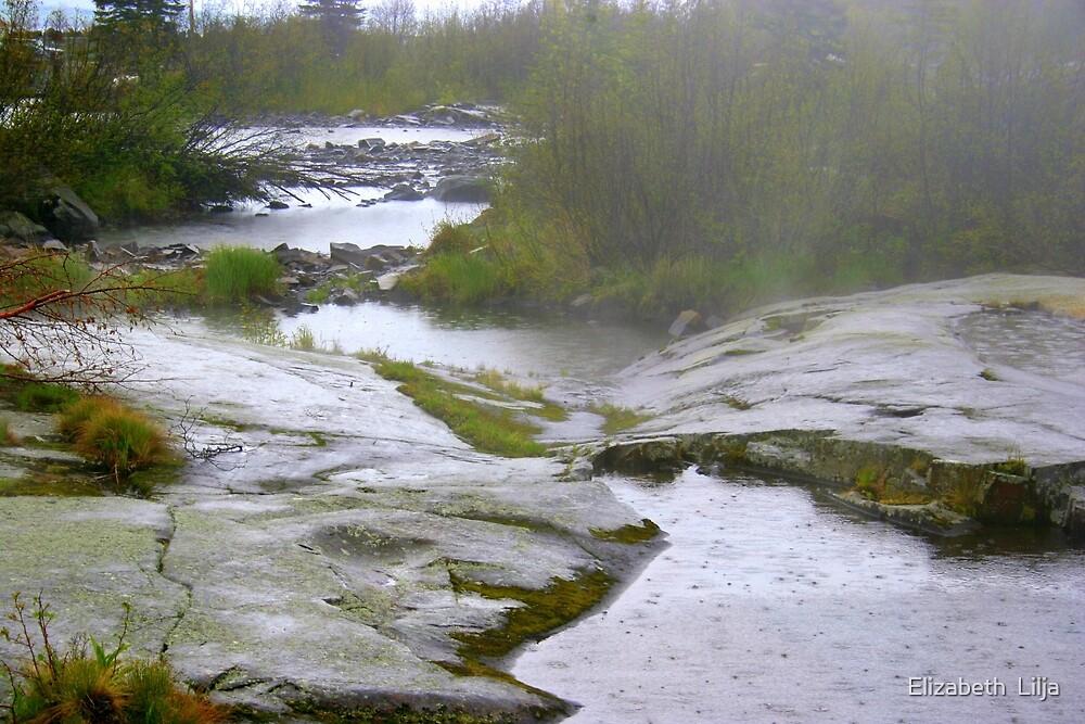 Rocks On Lake Superior by Elizabeth  Lilja