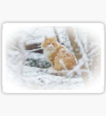 Snow Cat Sticker