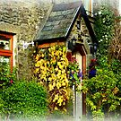 Devon Cottage by Charmiene Maxwell-Batten