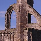 Windows In St Andrews Cathedral by Adrian Wale