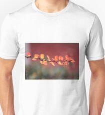 December colorsplash T-Shirt