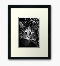 Blink! Framed Print