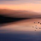 O'er Mountain by Angela King-Jones