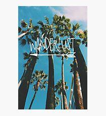Wanderlust Palm Photographic Print