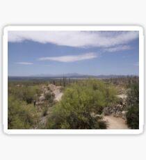 Arizona Desert Sticker