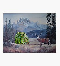 Boreal Jello Mold with Buck Photographic Print