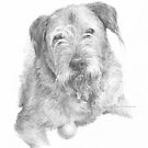 bristly hair dog drawing by Mike Theuer