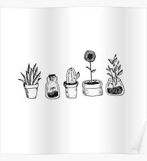 4 plants are better than 3 but then again 5 is better Poster