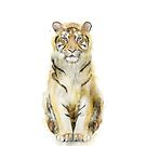 Tiger // Sound by Amy Hamilton