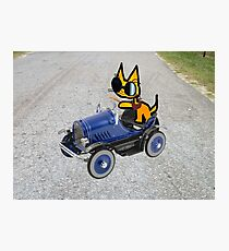 Cat In Toy Car Photographic Print