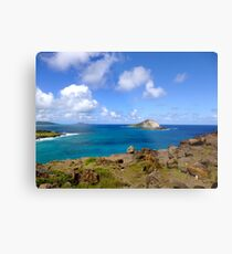 Oahu Shores Metal Print